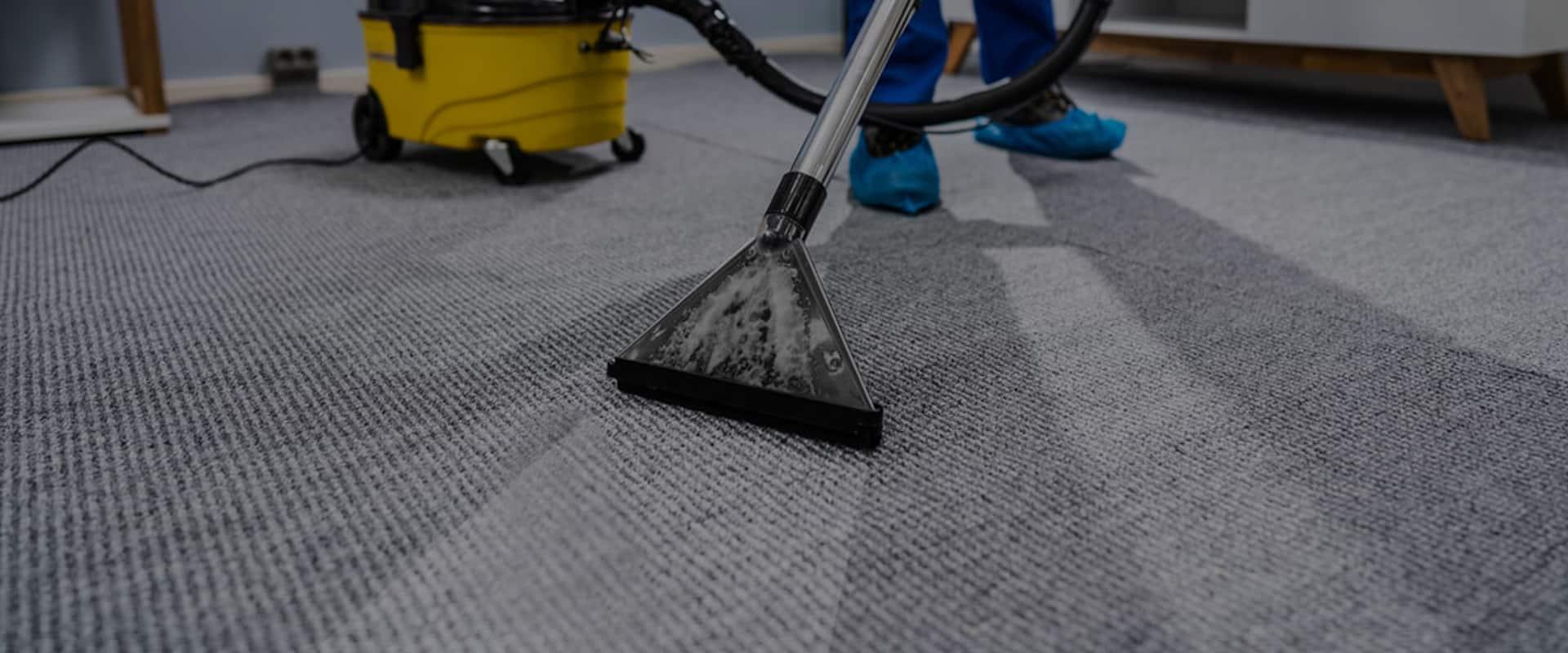 sExpert Carpet Cleaning Pakenham